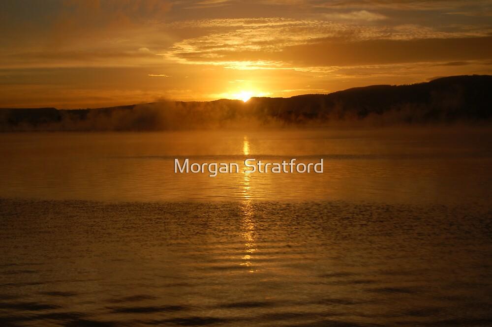 Morning Sun by Morgan Stratford