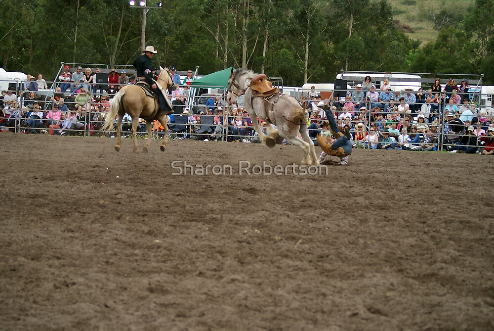 Picton Rodeo BRONC12 by Sharon Robertson