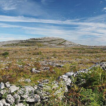 Mullaghmore, The Burren, Ireland by honeythief