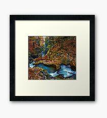 Galbena river, Apuseni, Romania Framed Print