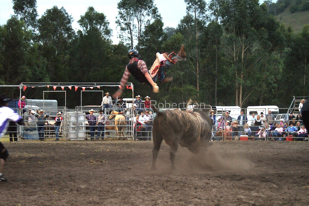 Picton Rodeo BULL7 by Sharon Robertson