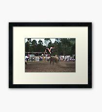 Picton Rodeo BULL7 Framed Print