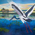 Jabiru Sunset by Wendy Sinclair