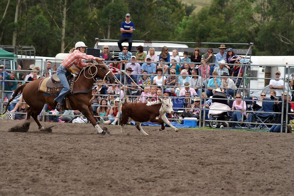 Picton Rodeo ROPE17 by Sharon Robertson
