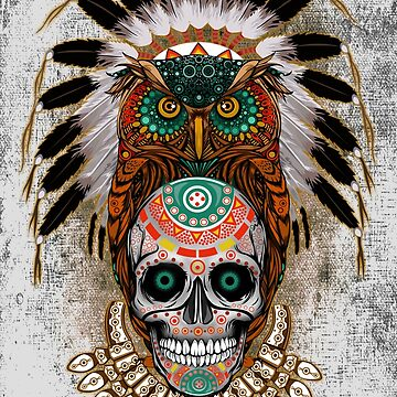 indian native Owl sugar Skull by dezigner007