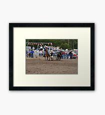Picton Rodeo STEER6 Framed Print