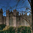 Arundel Castle - South View by Greg Roberts