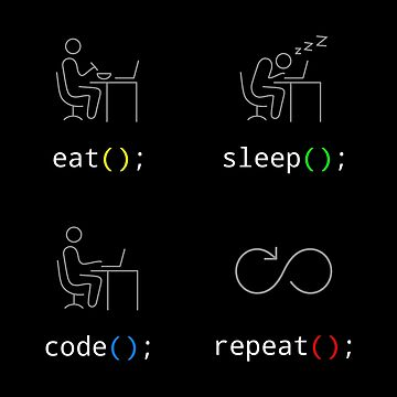 Eat Sleep Code Repeat by norithiel