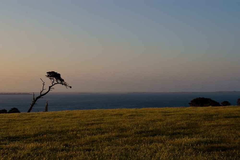 Late Afternoon by the Sea by Igor Janicijevic