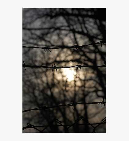 barbed wire sun Photographic Print