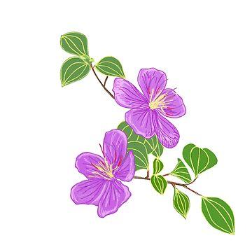 Purple Grass Flowers by leororing