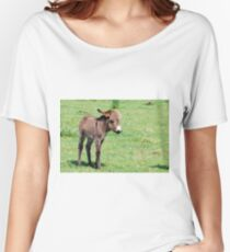 Cute little donkey on pasture Women's Relaxed Fit T-Shirt