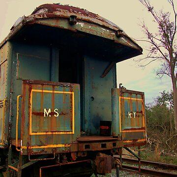 Abandoned Rail Car by wesleyrose