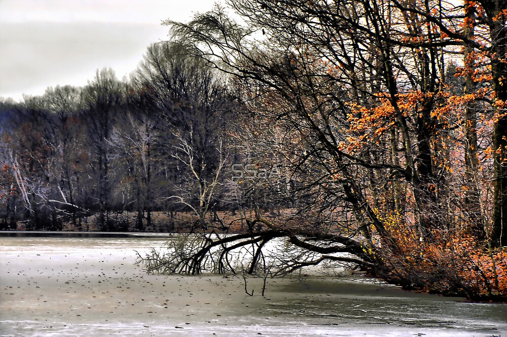 Frozen Lake by SSaA