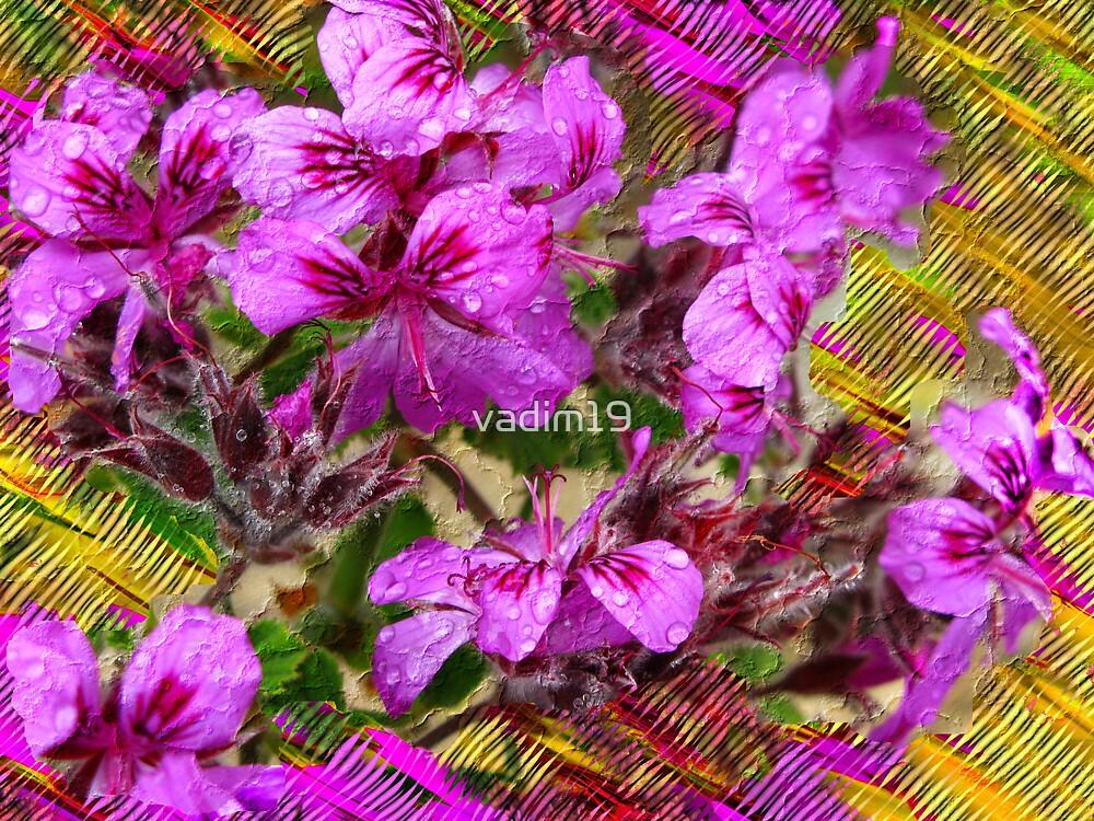 Kirstenbosch Gardens. Flowers. by vadim19