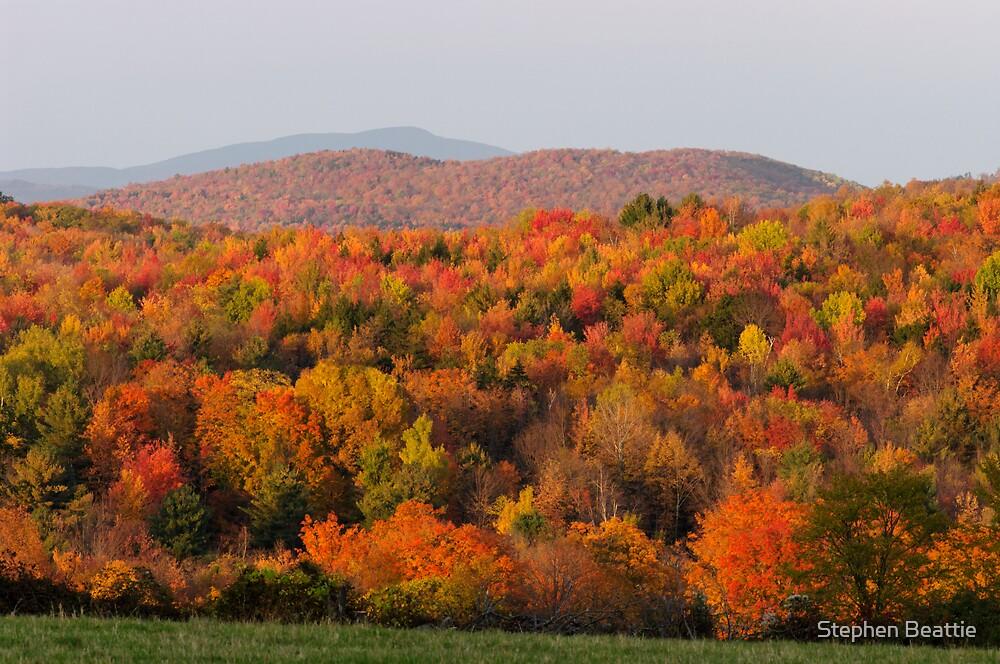 FREE Sex Dating in Bennington Vermont