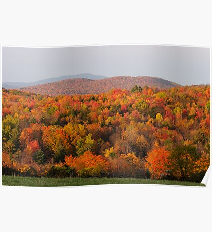 Peak Foliage - Vermont Poster