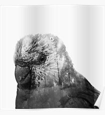 Double exposure Parrot Poster