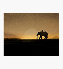 Wandering Sunset Photographic Print