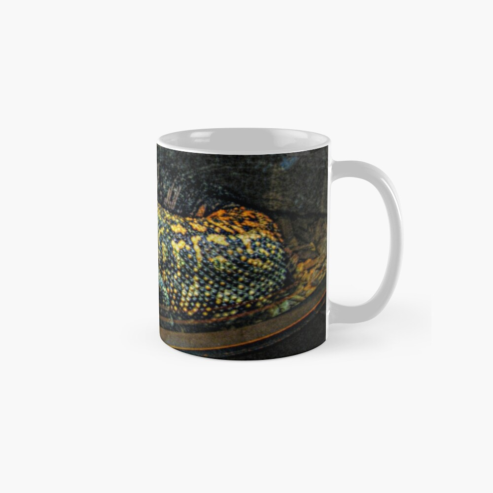 Gila Monster hinter Glas Tasse