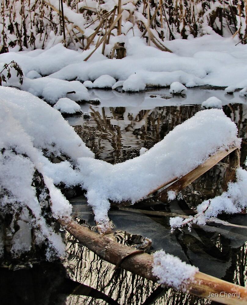 Snowy Creek by Jen Millard