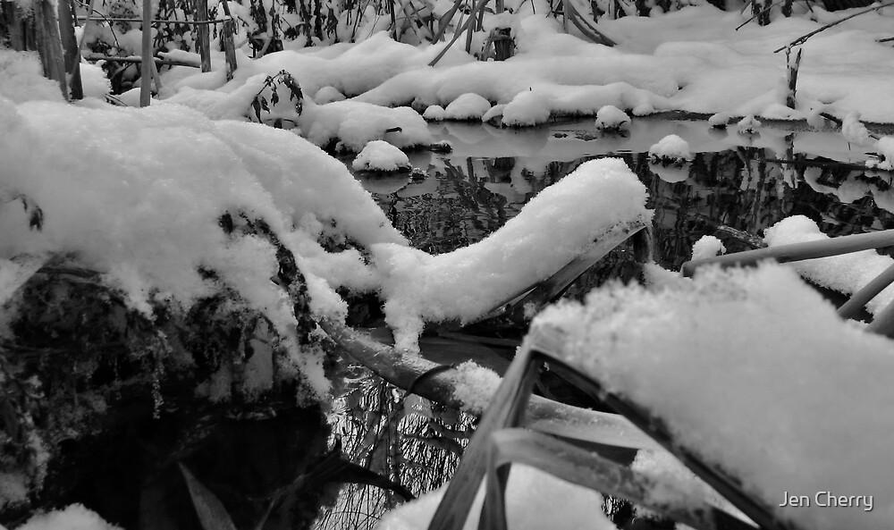 Snowy Islands by Jen Millard