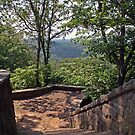 Scenic Overlook by Karl R. Martin