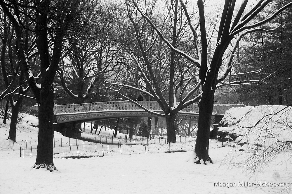 Winter in the Park by Meagan Miller-McKeever