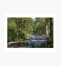 Tanner Creek Art Print