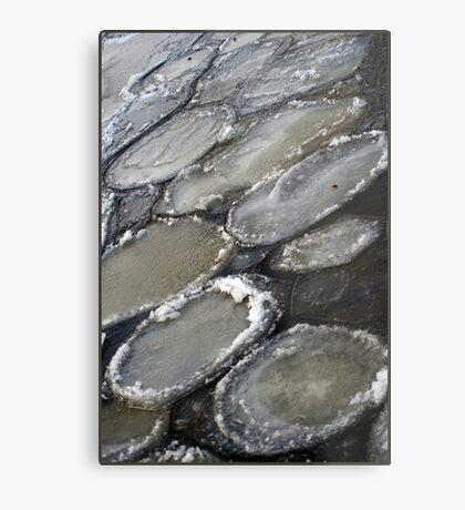 Ice plates Metal Print