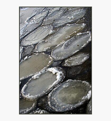 Ice plates Photographic Print