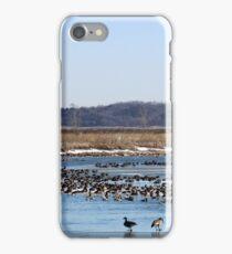 Spring Migration iPhone Case/Skin