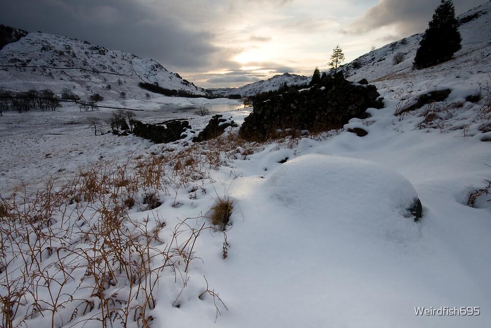 Blea Tarn - Snow, Lake district by Weirdfish695