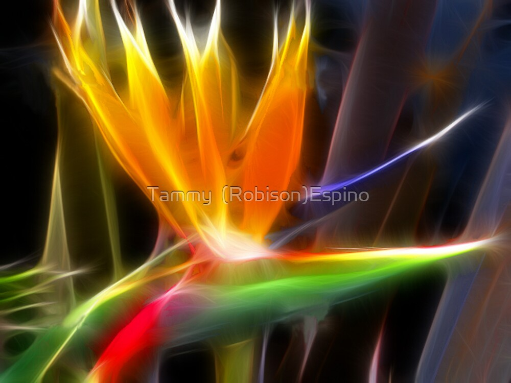 Bird of Paradise by Tammy  (Robison)Espino