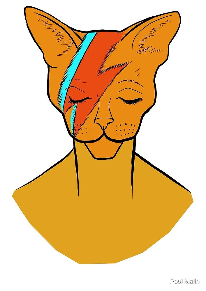 David Bowie Cat by Paul Malin