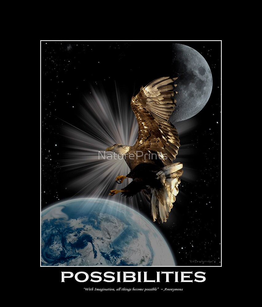 Bald Eagle POSSIBILITIES Motivational Wildlife by NaturePrints