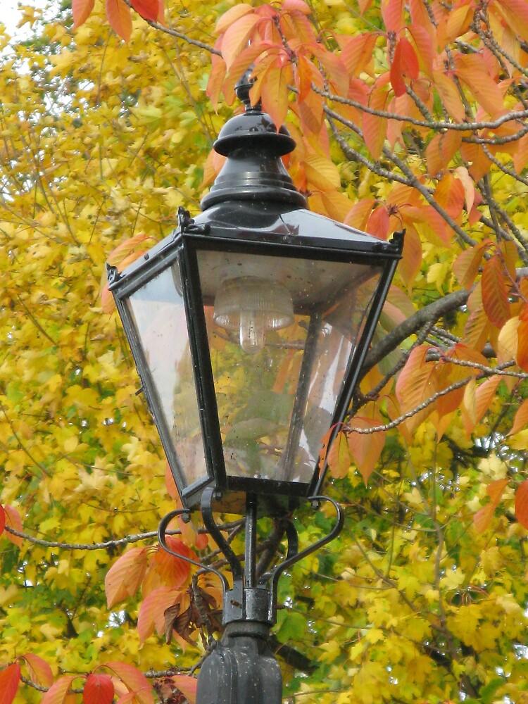 Lamp standard in Richmond by richalfa156
