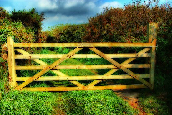 Gate by Catherine Hamilton-Veal  ©