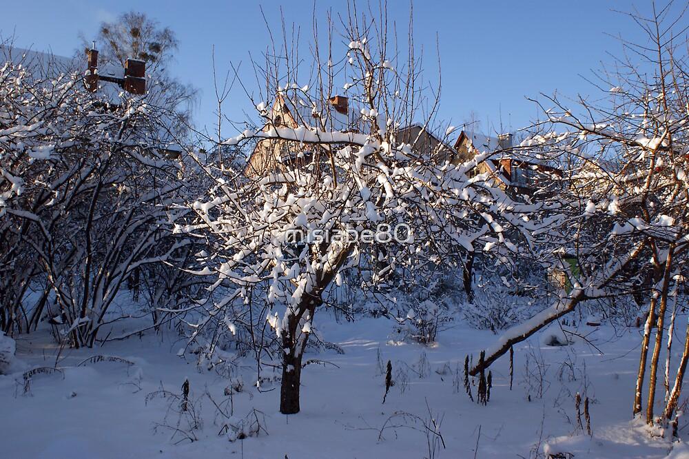 Winter in my garden by misiabe80