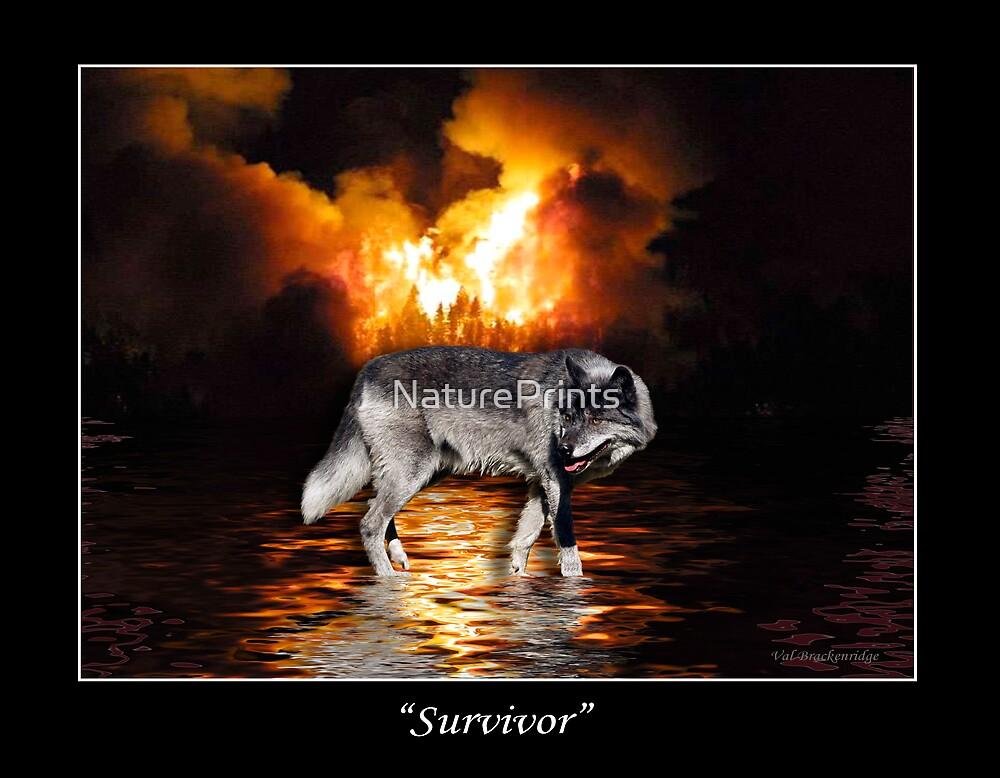 """Survivor"" Grey Wolf & Burning Forest Fire by NaturePrints"
