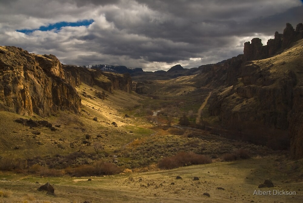 Owyhee Canyon Lands, Succor Creek Canyon by Albert Dickson