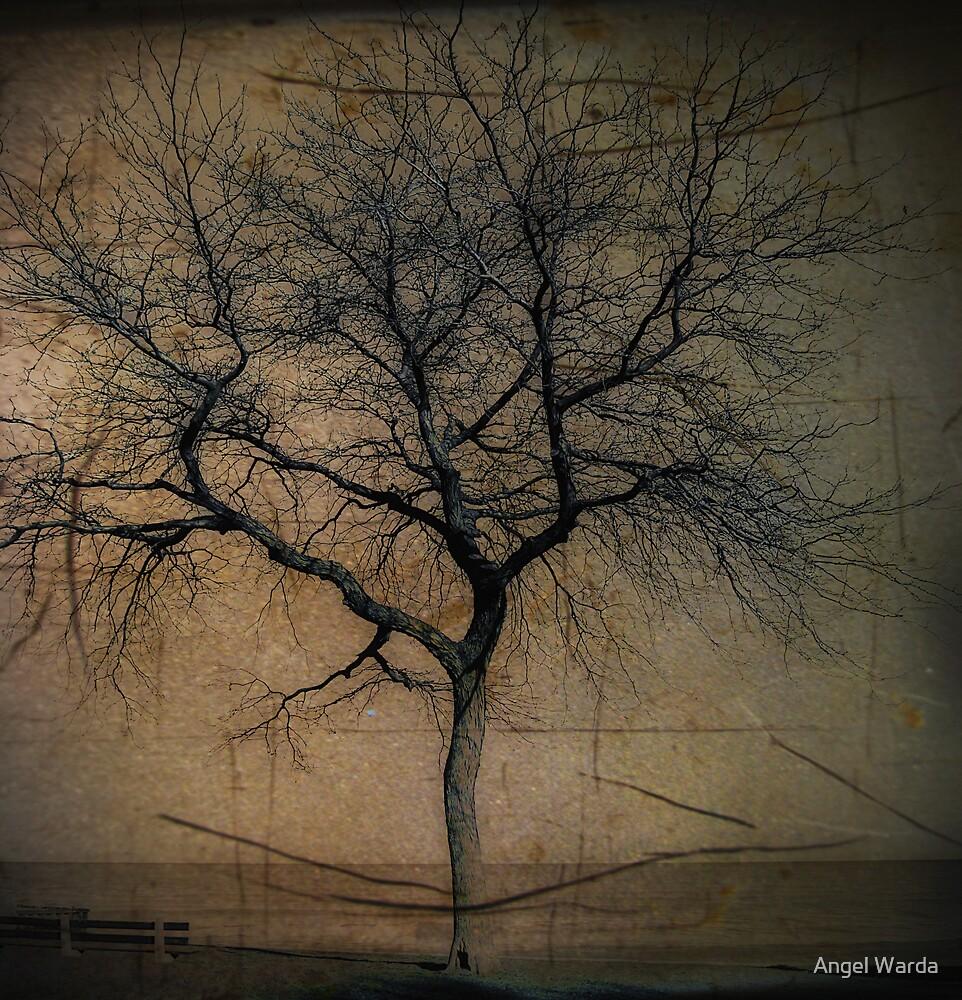 forsaken by Angel Warda