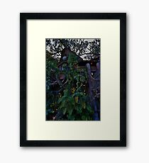 Tarzan's Tree House Framed Print