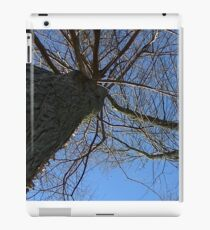 Windy Day - The Blue & The Green 038 iPad Case/Skin