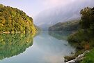 Mist and autumn colours on the Rhône river by Patrick Morand