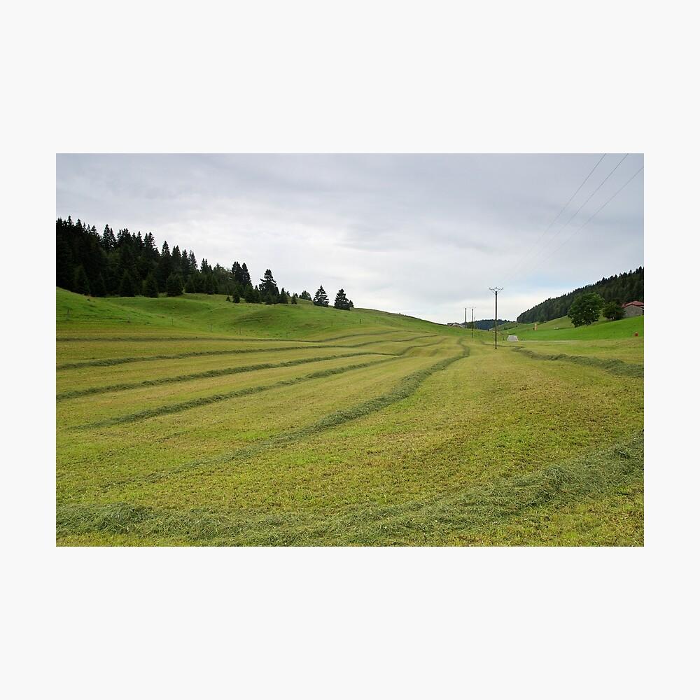 Rural landscape under the clouds in Haut Jura Natural Park Photographic Print