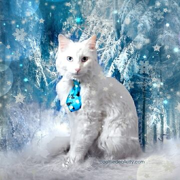 Snow Kitty by BootheDeafKitty
