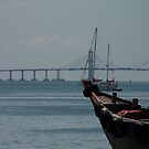 Long Bridge by Joeltee