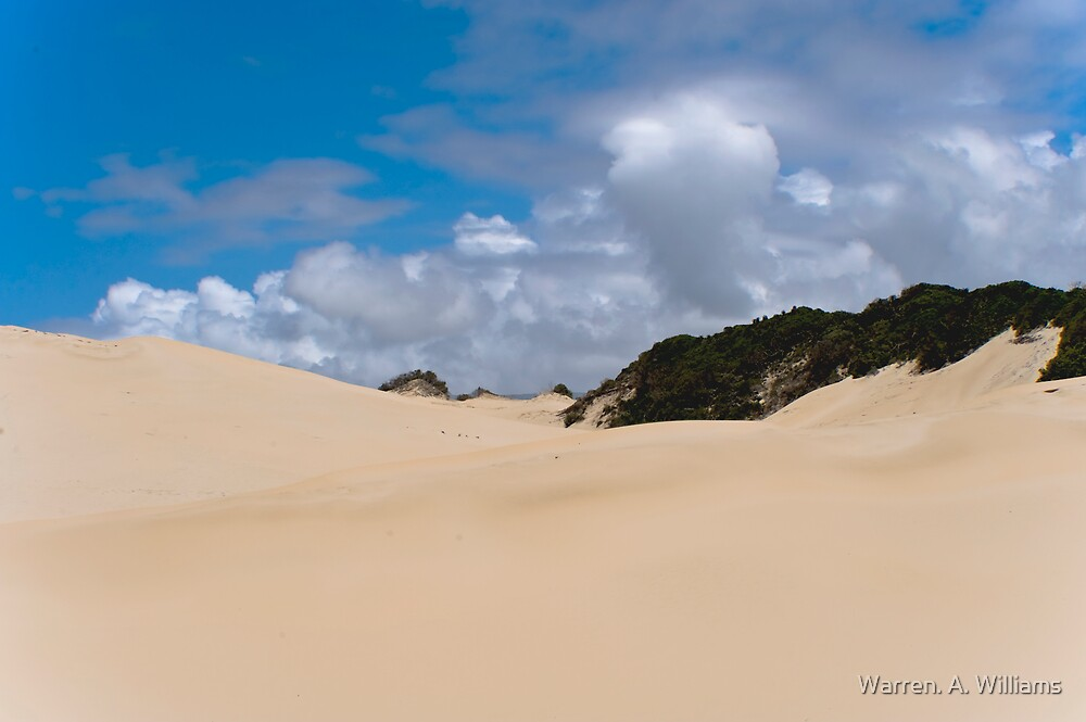 Pure Sand with a Topping. by Warren. A. Williams
