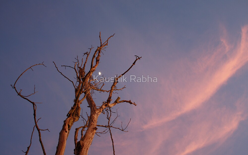 The moon in the sunset by Kaushik Rabha